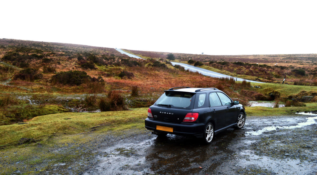 Scoob on Dartmoor