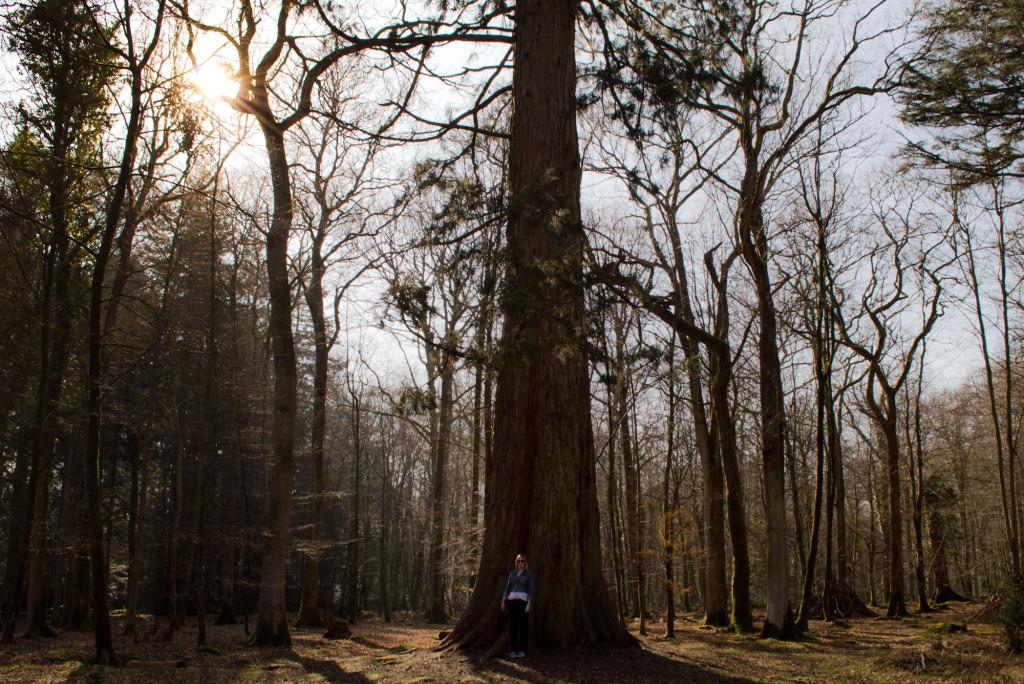 LeanneSequoia